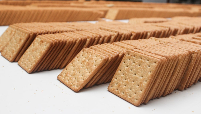 Is saltines Vegan